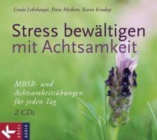 Stress bewältigen mit Achtsamkeit, 2 Audio-CDs
